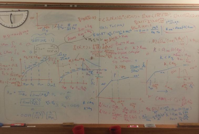 The crazy board